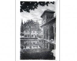 Juan luís Lirio: Partal de la Alhambra