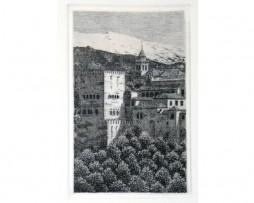 Juan luís Lirio: Torre de Comarex